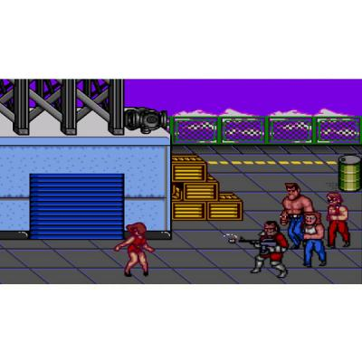 Double Dragon 2 (Sega) 3